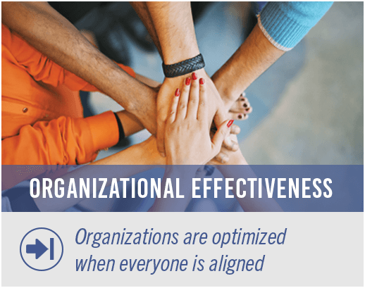 Organizations are optimized when everyone is aligned